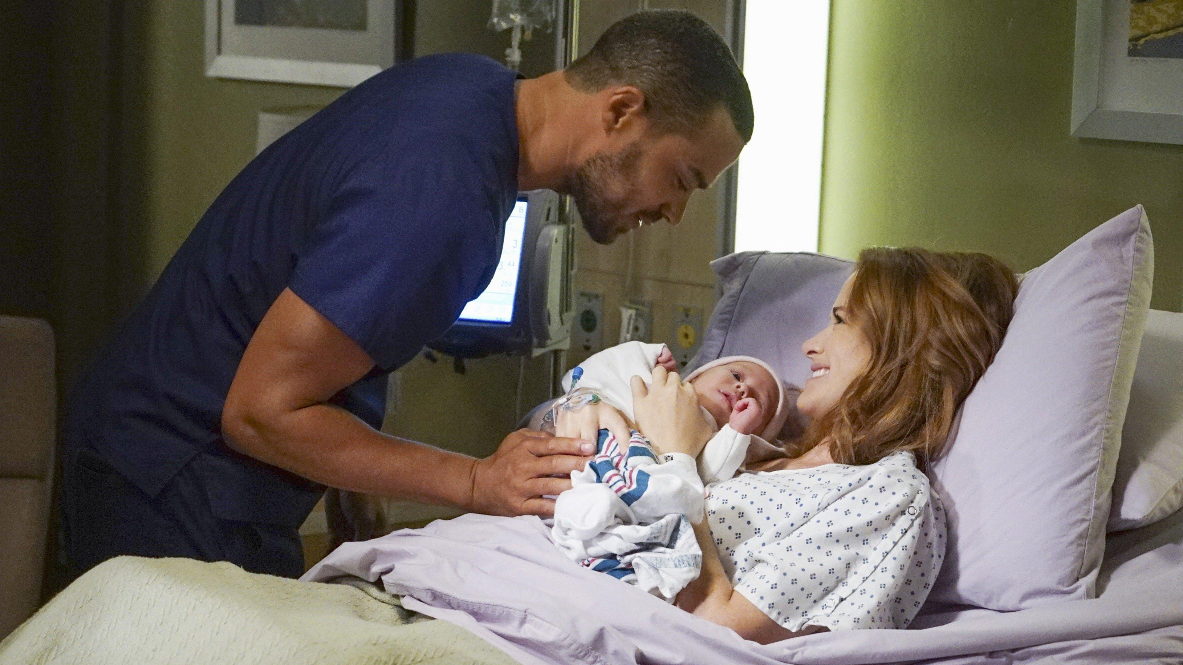 Greys Anatomy Season 13 Episode 1 Sky