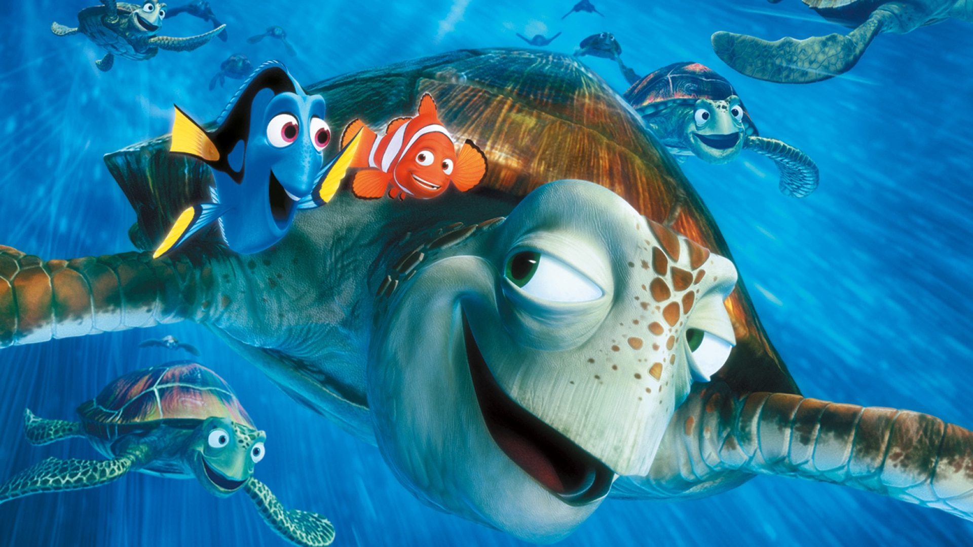 It's just a picture of Nifty Free Finding Nemo