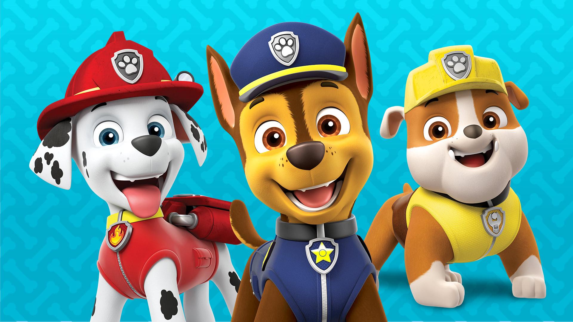 paw patrol  shorts  sky